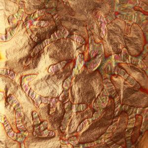 Red variegated std metal transfer leaf book